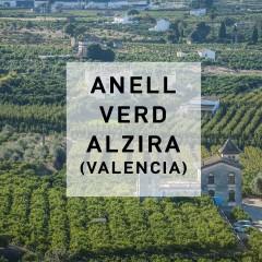 Anell Verd Alzira_2017